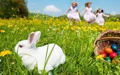 Pisanice zeko i djeca Desktop Pictures, Colorful Pictures, Easter Eggs, Bunny, Wallpaper, Children, Nature, Photography, Animals