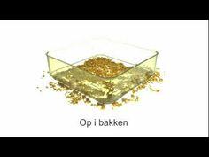 Video med tips til spiredyrkning i en Bergs Bio Salad spirekasse.
