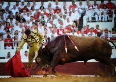 Notiferias Toros en Venezuela y el Mundo: DAX (FRANCIA): Adame pone la ambición y Urdiales e...