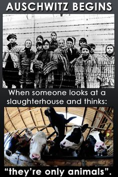 """Auschwitz begins when someone looks at a slaughterhouse and thinks """"they're only animals""""."""