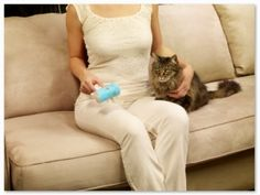 Schticky - The perfect solution to get rid οf pet hair frοm clothing/furniture fast and easy. Pet Accessories, Pets, Rid, Spaces, Clothing, Furniture, Outfits, Home Furnishings, Outfit Posts