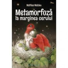 Metamorfoza la marginea cerului (ed. tiparita) Mai