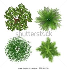 Stock Images similar to ID 138593246 - trees top view for landscape...