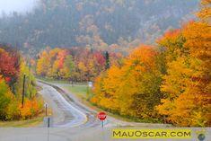 Kancamagus Highway em New Hampshire