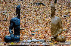Haein Art Project contemporary art in a  Buddhist Temple built in 802 A.D.  Haeinsa Temple, South Korea, Buddha, 2013