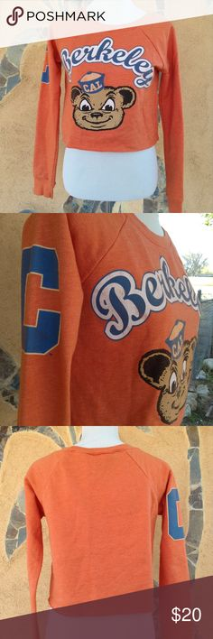 Cute orange cropped Berkeley college sweatshirt Cute orange Berkeley college sweatshirt with a teddy bear on the front. Crew neck and cropped with raw hem. In great condition. berkeley college Sweaters Crew & Scoop Necks