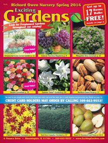 Your Cart Contents, Direct Gardening - Trees, Flowers, Seeds, Bulbs, Daylilies, Perennials