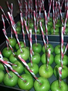 Caramel apples for Henry's barnyard birthday party