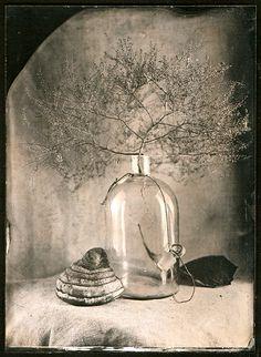 #still #life #photography • photo: Зима | photographer: Olga Vayner | WWW.PHOTODOM.COM