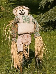How to Make a Scarecrow at Home for Free
