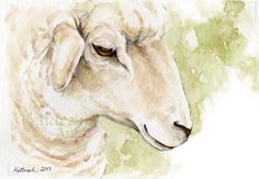 Sheep portrait is a Fine Art Print of a Watercolor Painting I did. I used watercolors, gouache and a little bit of pen and ink for the original.