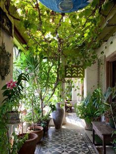 Summer style!! Gorgeous Modern Bohemian Chic courtyard with a canopy of vines and a wonderful cement tiles floor!