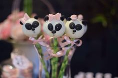 Panda cakepops