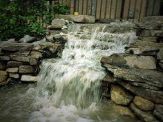 Backyard Koi Pond & Waterfall water feature