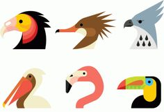 Aves en formas simples: bird illustration