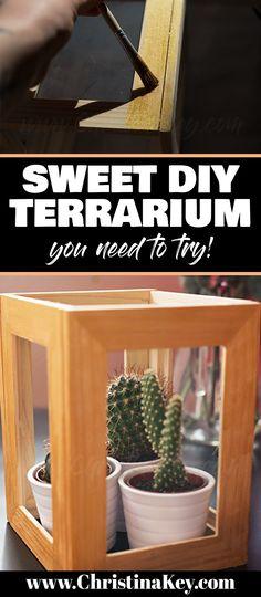 DIY Terrarium Ikea Hack You Will Love! Ikea Hack / DIY / Plant / Cacti