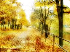 golden autumn scenery vector background art