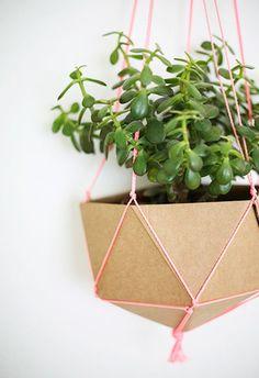 Image result for cardboard plant pot