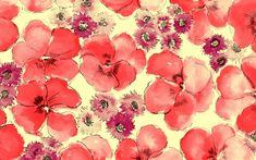 Flower  illustrations Design - Flower Patterns -  Flower Backgrounds  1280*800   Wallpaper 18