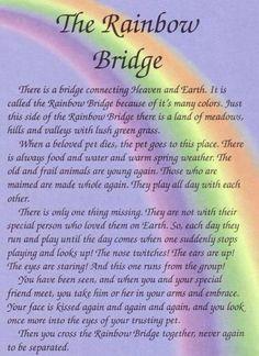 The rainbow Bridge my beloved Chevy