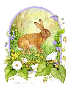 English Hare with wild flowers Large Premium edition by acornmoon, £35.00