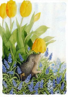 Grape hyacinths and yellow tulips by Finnish artist Inge Löök