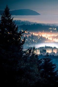 Foggy Night, Seattle, Washington