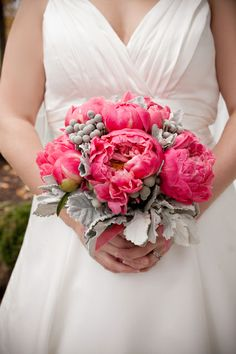 Coral charm peonies, were designed with silver dusty miller and silver brunia. This is a spring time bouquet but on rare occasions peony can be purchased in the late fall and or early winter.