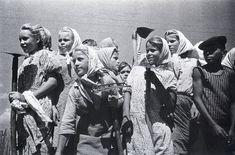 Шайхет А.С. Целина. Школьники помогают колхозу. 1955 г.