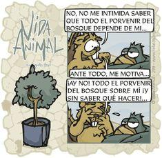 Vida Animal · ¿Intimidado? ¡para naaada!...