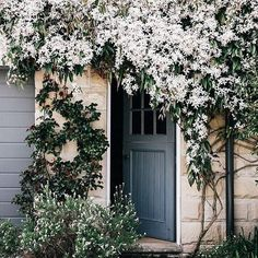 How pretty is this clematis cascading over a doorway at @melissa_penfold's Southern Highland home.