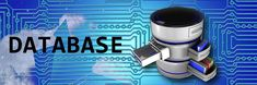 Database Management System: The term 'Database' is characterized as an assortment of electronic records that can be Processed to produce helpful data. What Are Schemas, Relational Database Management System, Data Migration, Oracle Database, Microsoft Sql Server, Application Web, Data Backup, Computer Science, Data Science