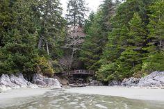 Photo of Tonquin Park Vancouver Island, British Columbia, Trip Advisor, Attraction, Articles, Canada, Explore, Park, Photos