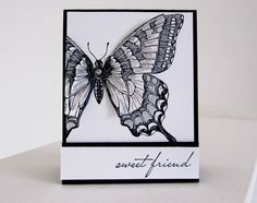 Stampin Up Swallowtail Butterfly- stamped it three times and then cut out different sections and used dimensions to pop up different sections to give it a 3-D look