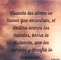 ✿⊱╮Mirtha Aguilera