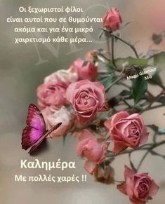 Night Pictures, Night Photos, Good Morning Images, Good Morning Quotes, Good Night, Rose, Flowers, Greek, Gifts
