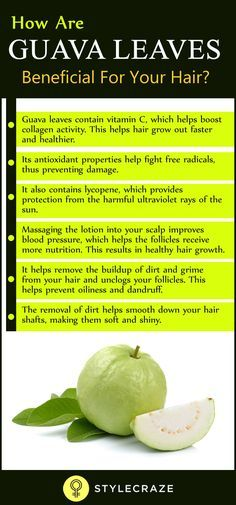 Guava leaves have taken the internet by storm with claims of it being a miracle solution for hair loss. It is also gaining popularity as a hair thickening ingredient that promotes rapid hair growth. But how exactly are guava leaves beneficial for your hair?