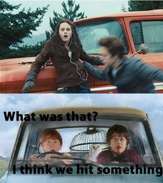 Point 1 harry potter point twilight – Harry Potter funny (Memes) – Jokes-A Twilight Harry Potter, Twilight Meme, Harry Potter Jokes, Harry Potter Fandom, Twilight Saga, Harry Potter Crossover, Memes Humor, Memes Funny Faces, Hilarious Memes