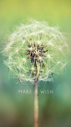 """""""Faça um desejo."""""""