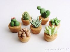 Cactus Party ~ Cacti cookies created by awesome custom Cookie maker