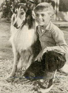 """Jon Provost Forever associated with a heroic TV collie whom he frequently had his arms lovingly wrapped around, blond tyke Jon Provost actually was a veteran performer by the time he won the role of """"Timmy Martin"""" at age seven in the series Lassie"""