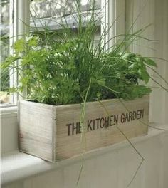 Great idea for an herb garden near a window in the kitchen or anywhere really!! #urbanninjagardening
