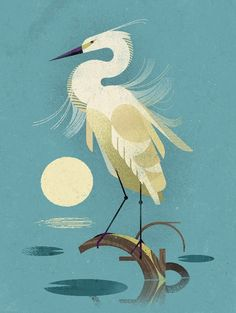 Little Egret - Dieter Braun Vogel Illustration, Graphic Illustration, Animal Graphic, Mid Century Art, Art Deco Design, Bird Art, Animal Drawings, Japanese Art, Framed Art Prints