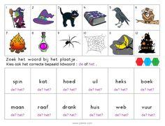 Thema : Halloween. Oefening: Zoek het woord bij het plaatje. Kies het correcte bepaald lidwoord.