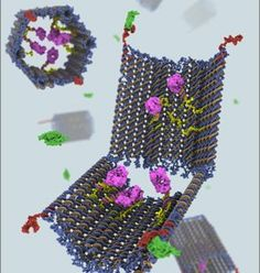 Researchers have built a nano-robot made entirely from DNA. Based on a technique called DNA origami, the smart drug can seek out and destroy cancer cells, leaving healthy cells unscathed. Technology World, Science And Technology, Futuristic Technology, Science Education, Dna, Robot Programming, The Future Is Now, Harvard University, Materials Science