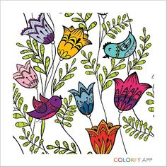 Colorfy app is great Adult Coloring, Coloring Books, Coloring Pages, Colouring, Colorfy App, Love Drawings, Pretty Art, Blue Bird, Color Schemes