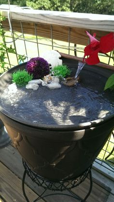 Hummingbird bath diy