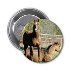 >>>This Deals          	Two Horses at Pasture Pin           	Two Horses at Pasture Pin Yes I can say you are on right site we just collected best shopping store that haveHow to          	Two Horses at Pasture Pin Review on the This website by click the button below...Cleck Hot Deals >>> http://www.zazzle.com/two_horses_at_pasture_pin-145763475013286000?rf=238627982471231924&zbar=1&tc=terrest
