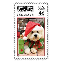 Christmas - Bichon Frise - Daisy Postage Stamp