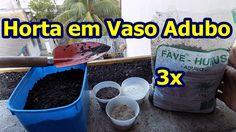 Adubaçao para Horta em Vasos e Canteiros